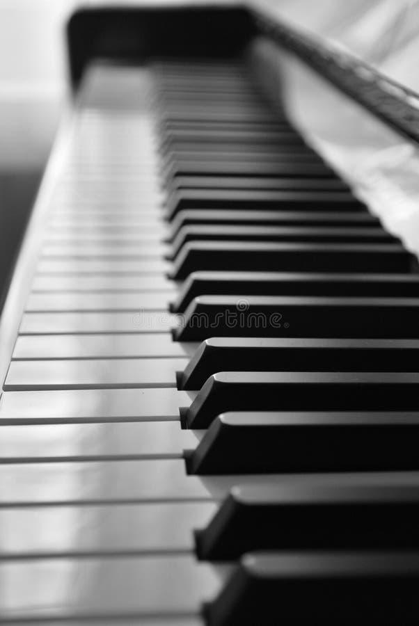 Svartvita tangenter av pianot royaltyfri bild