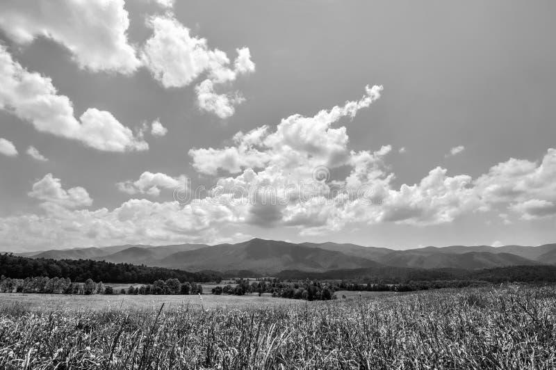 Svartvitt grässlättlandskap på den Cades liten vikdalen i Tennessee arkivfoton