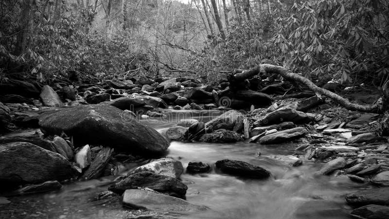 Svartvitt naturfotografi av en rytande flod i de djupa träna av den Great Smoky Mountains nationalparken arkivfoton