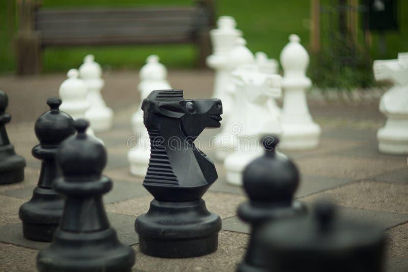 Svartvitt schack royaltyfri foto