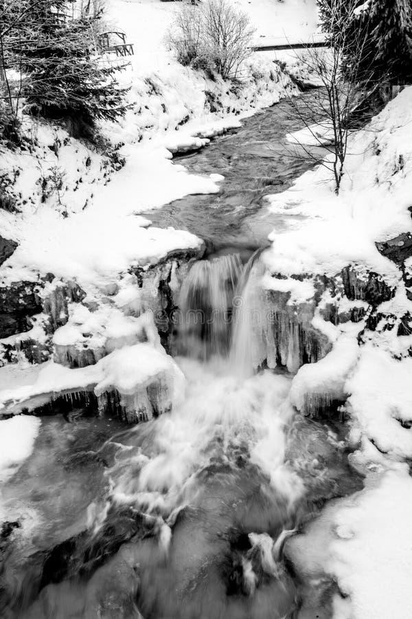 Svartvitt skott av den snabba floden för högt berg på den snöig skogen royaltyfri bild