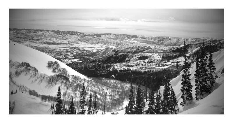 Svartvitt vinterlandskap från Brighton Ski Resort i wasatchberg Utah royaltyfria bilder