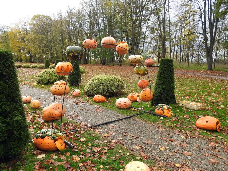 Path, pumpkins and colorful autumn trees, Lithuania royalty free stock images