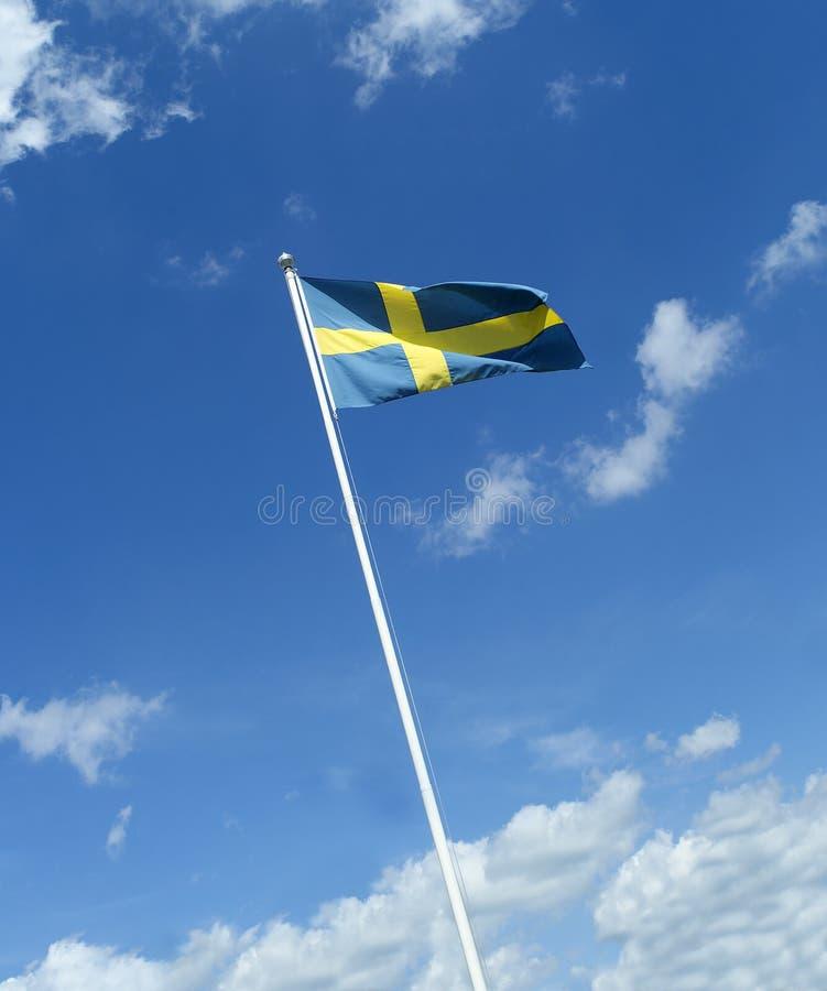Svensk flagga arkivfoto
