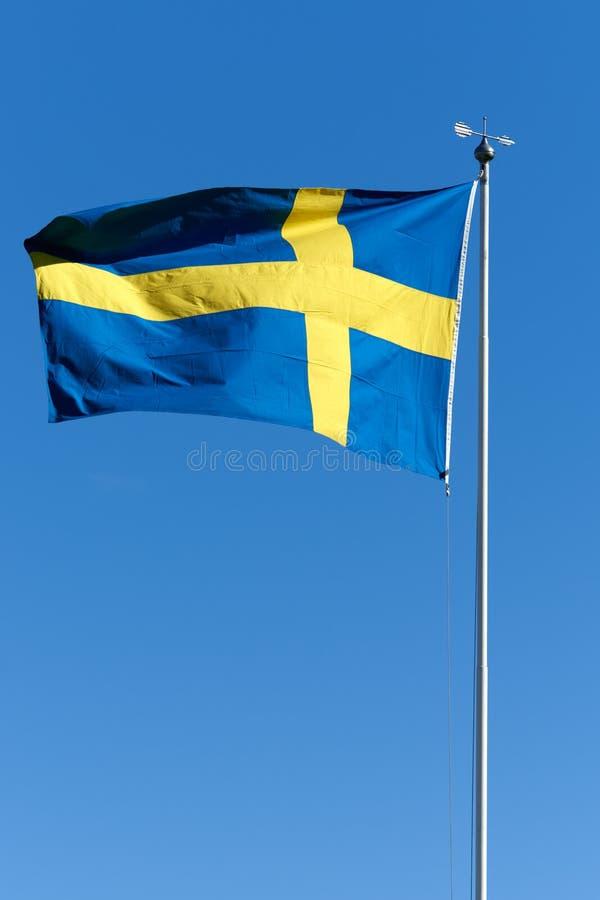 Svensk flagga royaltyfri bild