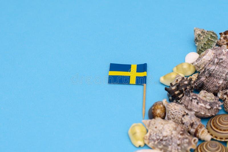 Svensk flagga bredvid ett härligt snäckskal på en blå bakgrund 12 December 2018 fotografering för bildbyråer