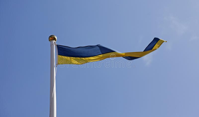 Svensk flagga som standert på flaggstång royaltyfri foto
