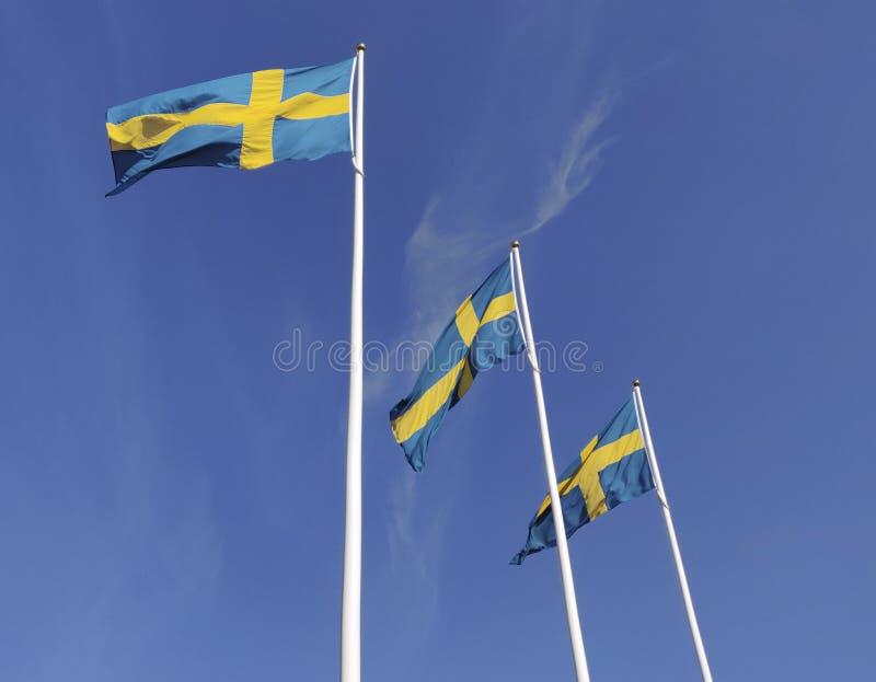 Svensk flagga som tre vinkar med vindflödet under den blåa himlen för beröm för nationell dag royaltyfri foto