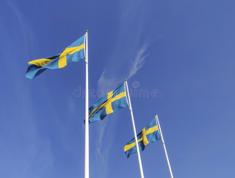 Svensk flagga som vinkar med vindflödet under den blåa himlen för beröm för nationell dag royaltyfria bilder
