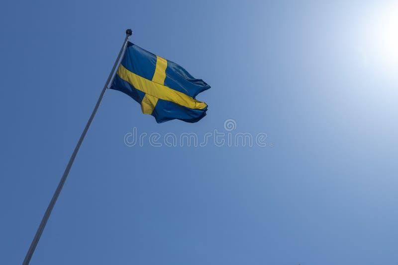 Svensk flagga som vinkar på molnfri himmel royaltyfri foto