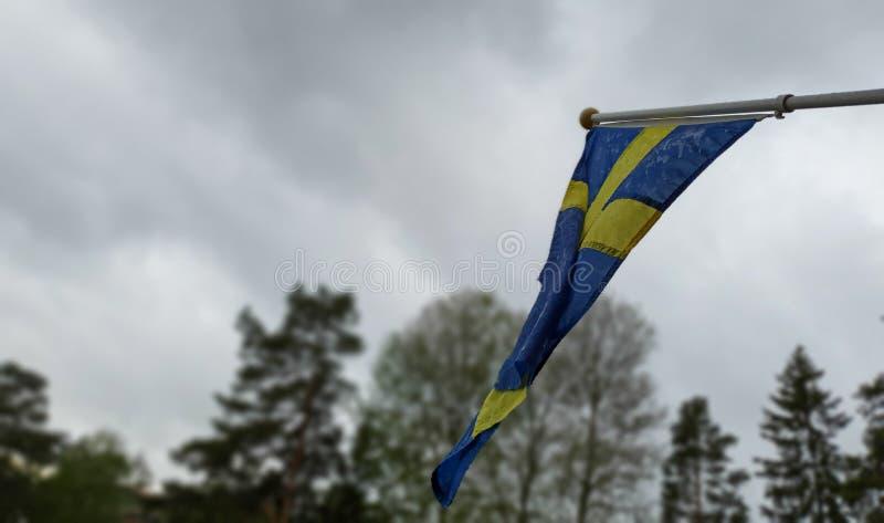 Svensk regnig sommar Våt svensk flagga royaltyfri bild