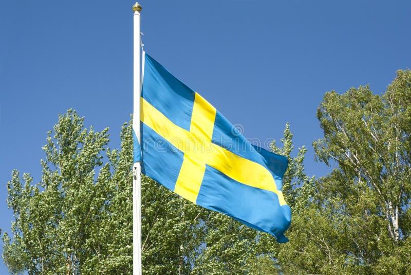 Svenskflagga på bakgrund för blå himmel arkivbilder