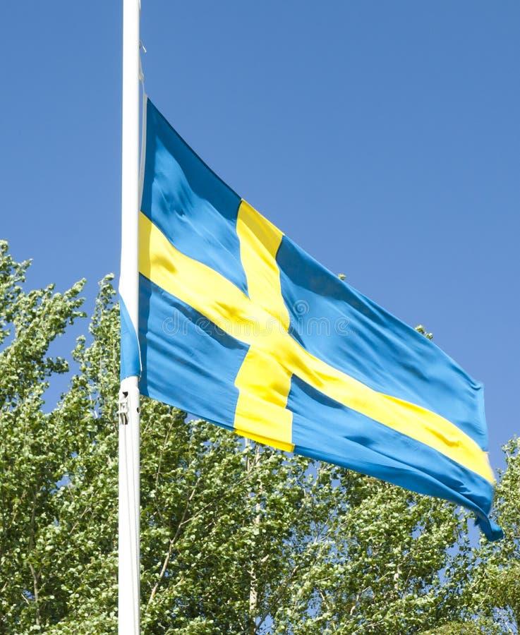 Svenskflagga på bakgrund för blå himmel royaltyfri bild