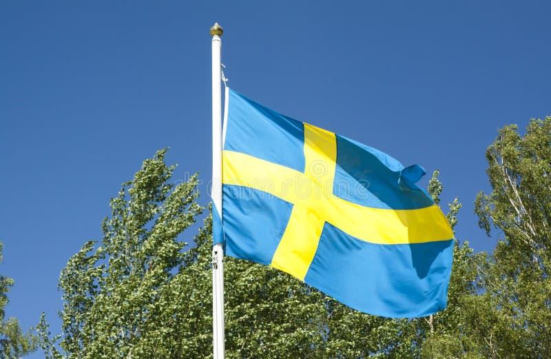 Svenskflagga på bakgrund för blå himmel royaltyfria foton