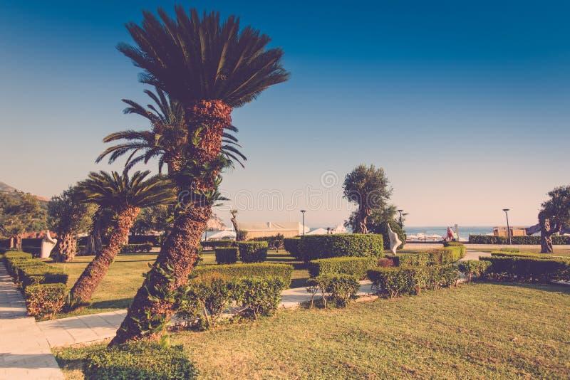 Sveti斯蒂芬海岛的豪华旅游胜地看法  有棕榈树的风景胡同临近地中海 Milocer公园 布德瓦Ri 库存图片