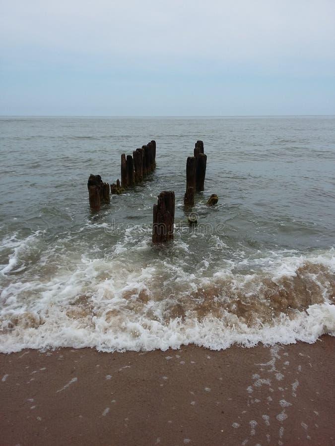 Svetlogorsk, mousse de la mer baltique, mer image stock