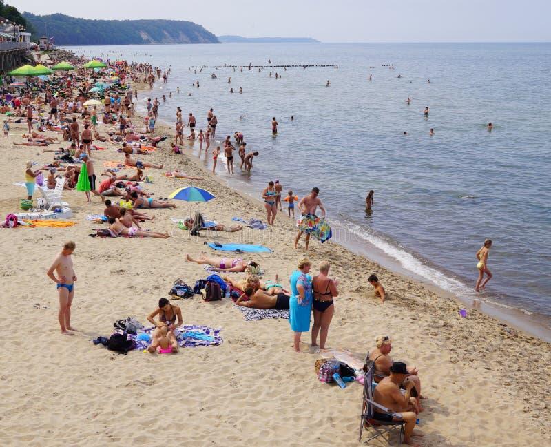 SVETLOGORSK, RUSSLAND: Sandy-Strand auf Küste von Ostsee lizenzfreie stockfotografie