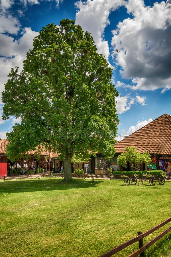 Old oak in Serbia. Svilajnac, Serbia May 17, 2017: Restaurant old oak in Serbia royalty free stock photos