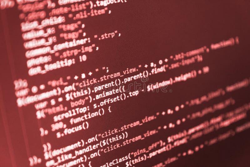 Sviluppatore di programmazione del pitone immagine stock libera da diritti