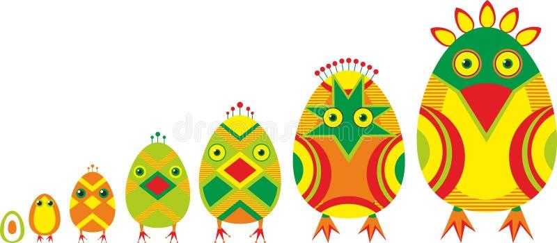 Sviluppo degli uccelli illustrazione vettoriale