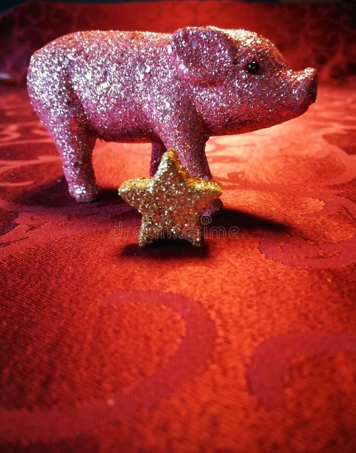 Svin för bra lycka med stjärnan arkivbild