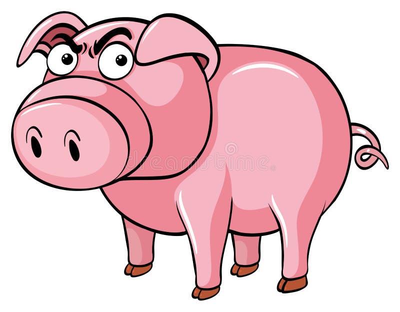 Svin med den ilskna framsidan stock illustrationer