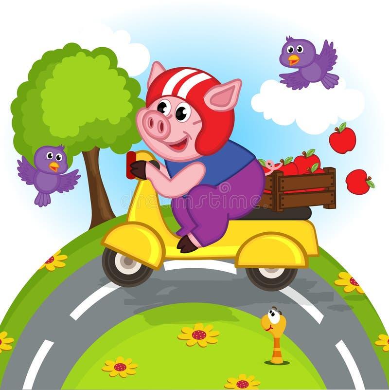 Svin som rider en sparkcykel stock illustrationer
