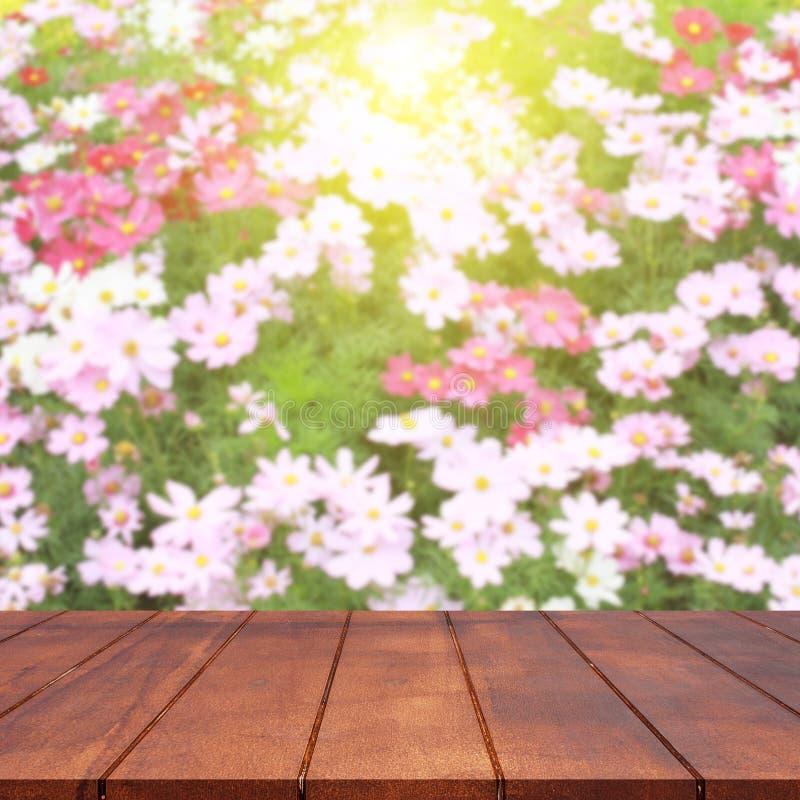 Svuoti il tavolo della presidenza di legno ed il fondo vago del fiore dell'universo immagine stock libera da diritti