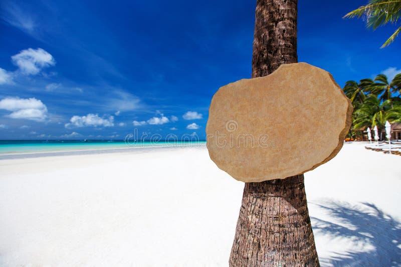 Svuoti l'insegna di legno sulla palma sulla spiaggia tropicale immagini stock libere da diritti