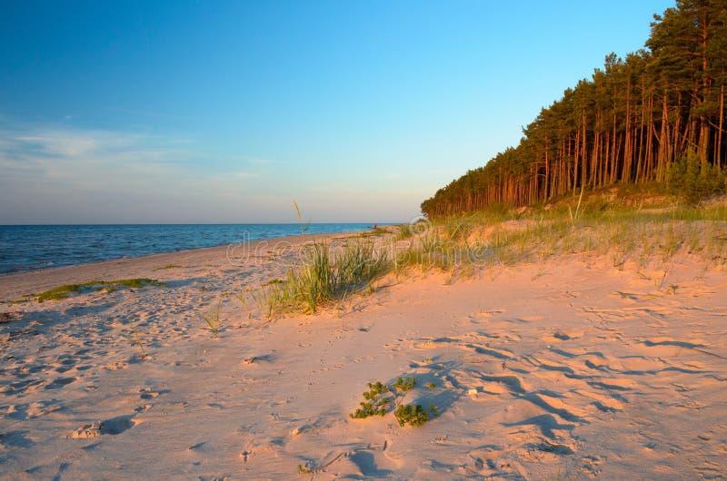 Svuoti la spiaggia selvaggia con i raggi del sole di passaggio Costa Lettonia del Mar Baltico fotografie stock