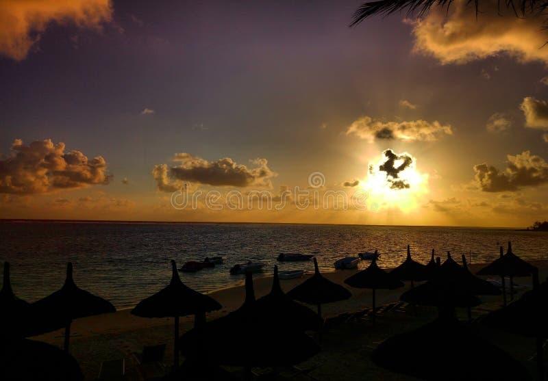 Swój wszystko wokoło słońce promienie zdjęcie royalty free