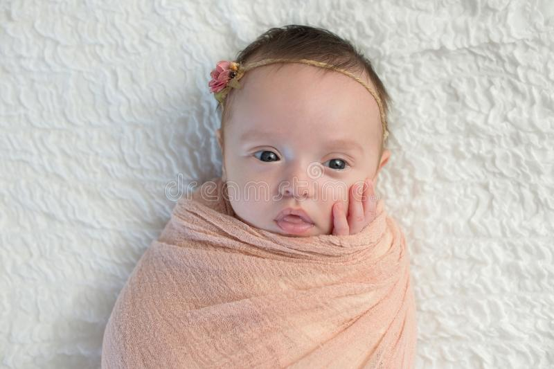 Alert Baby Girl Swaddled in a Light Peach Wrap royalty free stock photography