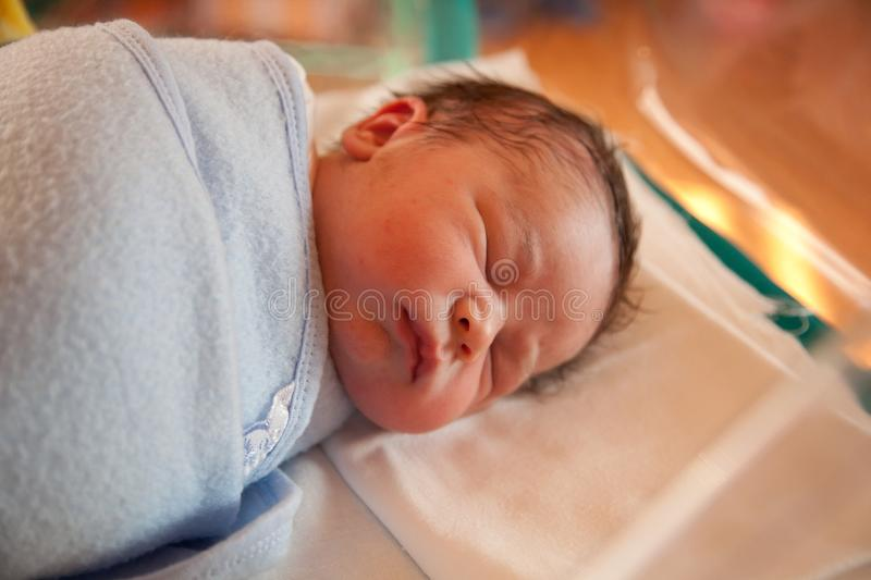 Swaddled new born baby. Two hours old baby resting in swaddling-clothes stock photography