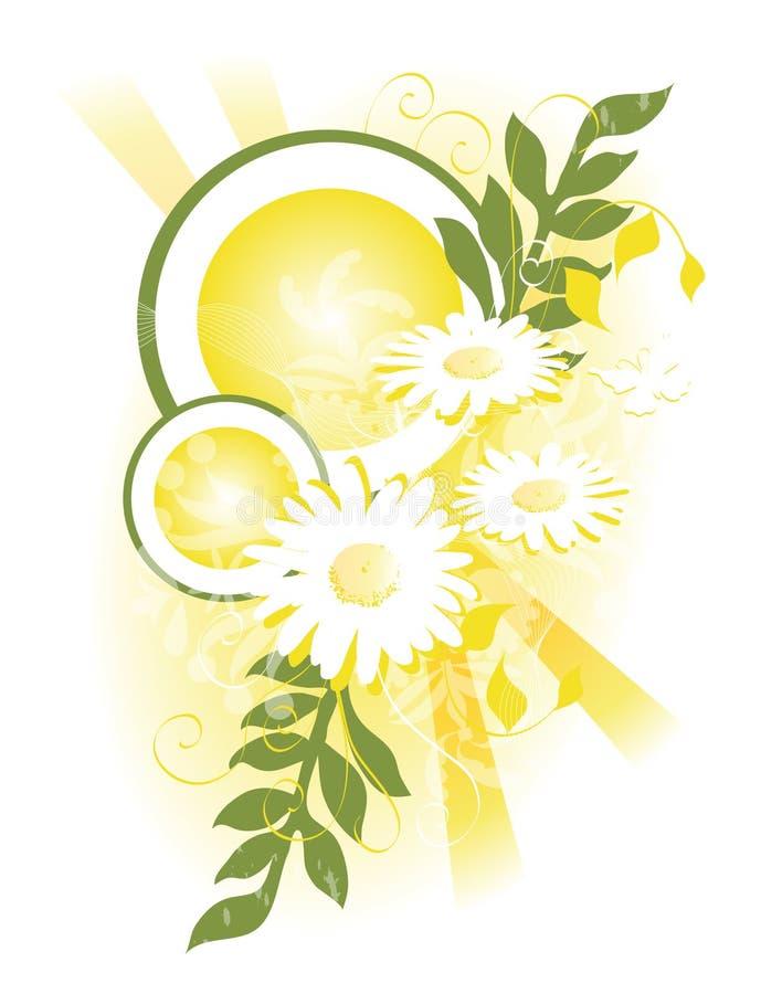 Swag giallo della margherita illustrazione di stock