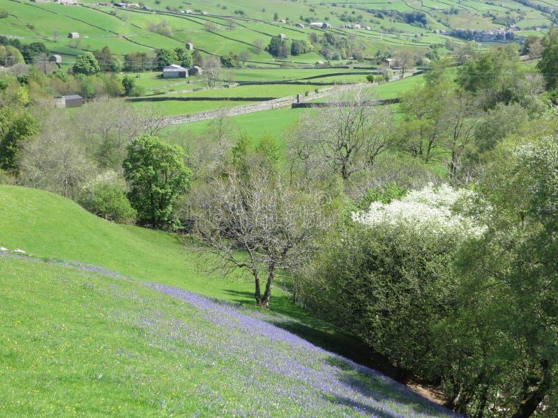 Swaledale Yorkshire fotos de archivo