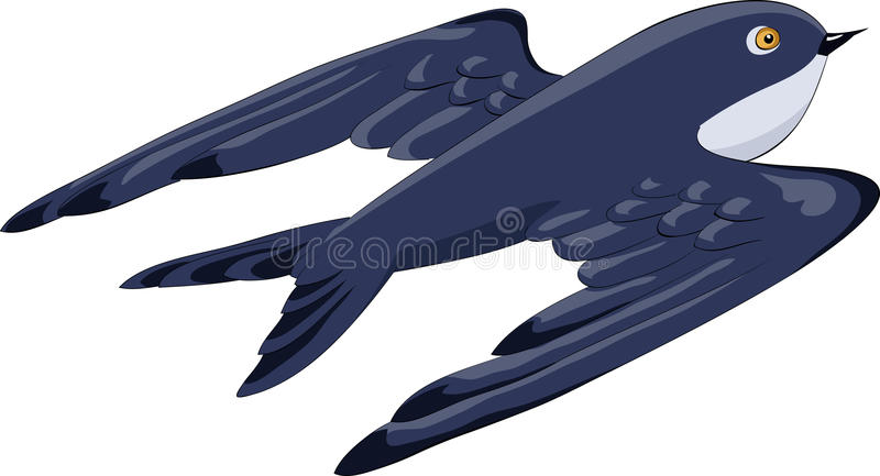 Download Swallow stock vector. Image of illustration, image, bluebird - 16124217