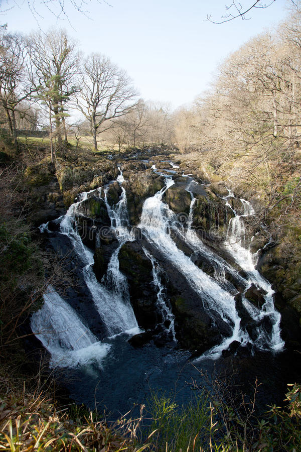 Download Swallow Falls stock image. Image of snowdonia, swallow - 18991717