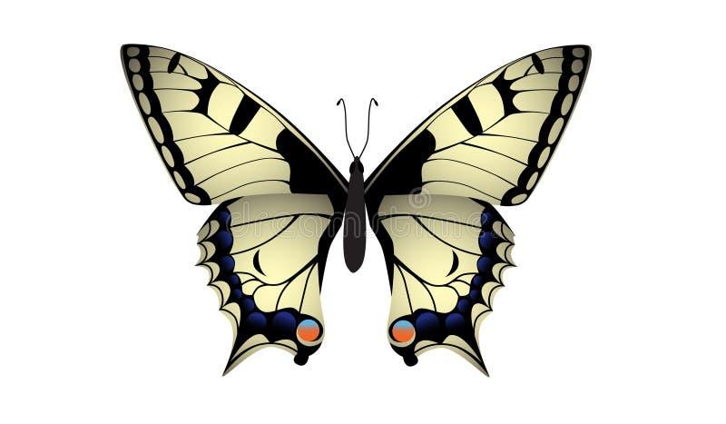 Swallowtail蝴蝶传染媒介 向量例证
