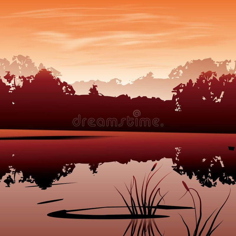 Download Swamp stock illustration. Image of water, outdoor, forest - 476128