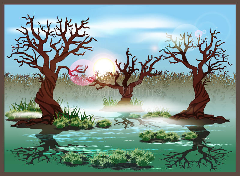 swamp imagem de stock