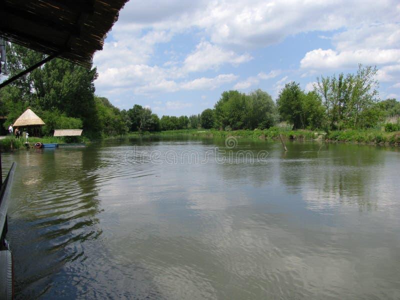 Swamp Carska bara in Vojvodina royalty free stock photography