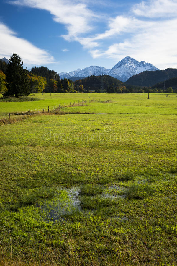 Download Swamp And Meadow At Autumn With Sky Stock Photo - Image: 27390046
