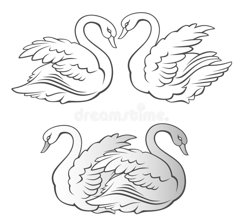 Download Swan stock vector. Image of isolated, poultry, scene - 16413150