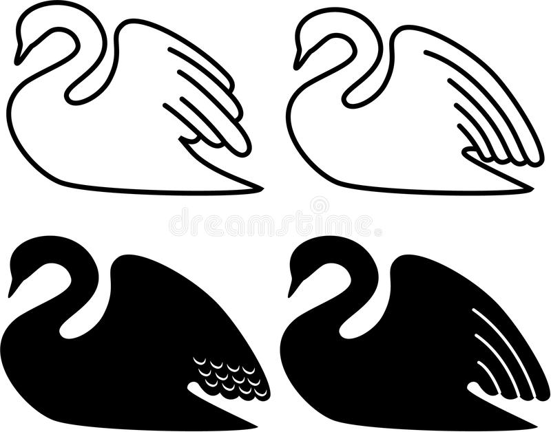 Swan Stock Images