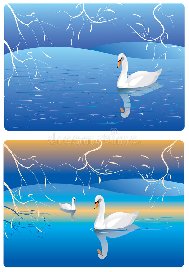 Download Swan stock vector. Illustration of classics, lake, style - 3527092
