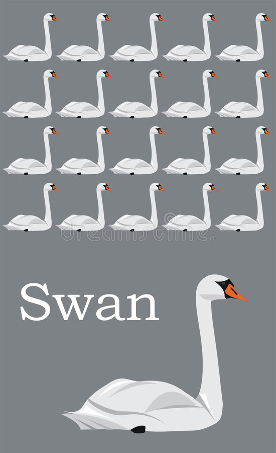Free Swan Stock Image - 8520071
