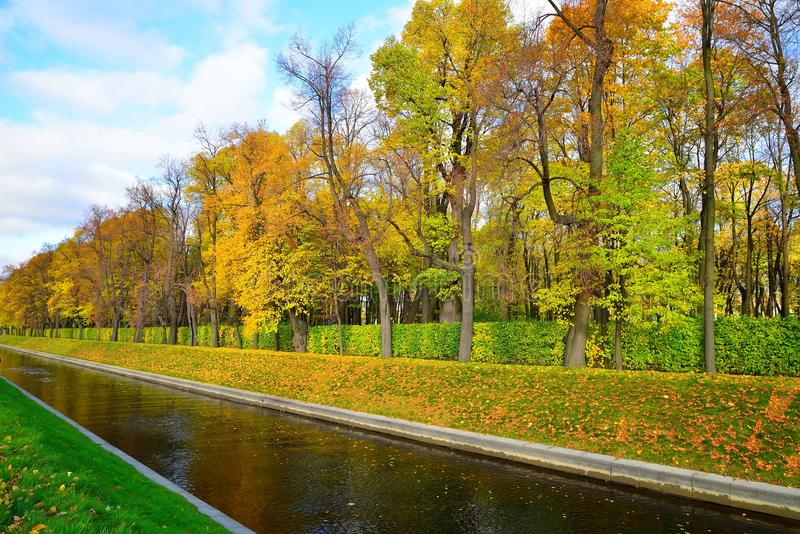 Swan canal and a Summer garden in autumn. In Saint-Petersburg. St. Petersburg stock photography