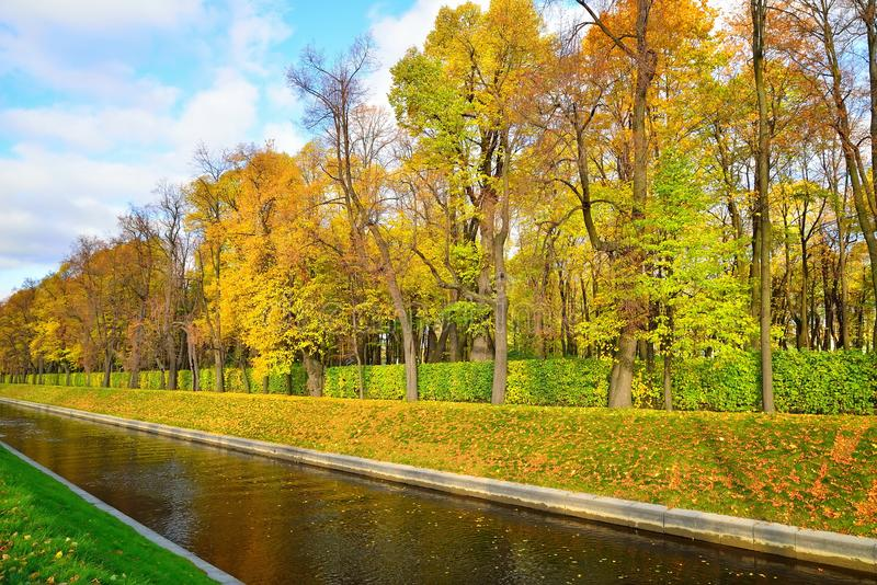 Swan canal and a Summer Garden with yellow leaves in autumn.  stock photos