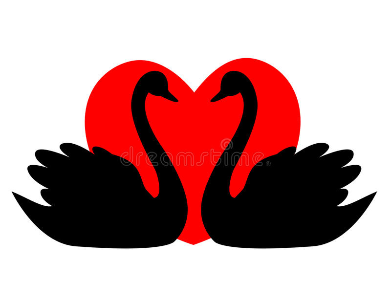 Download Swan couple with heart stock vector. Image of abstract - 12542334