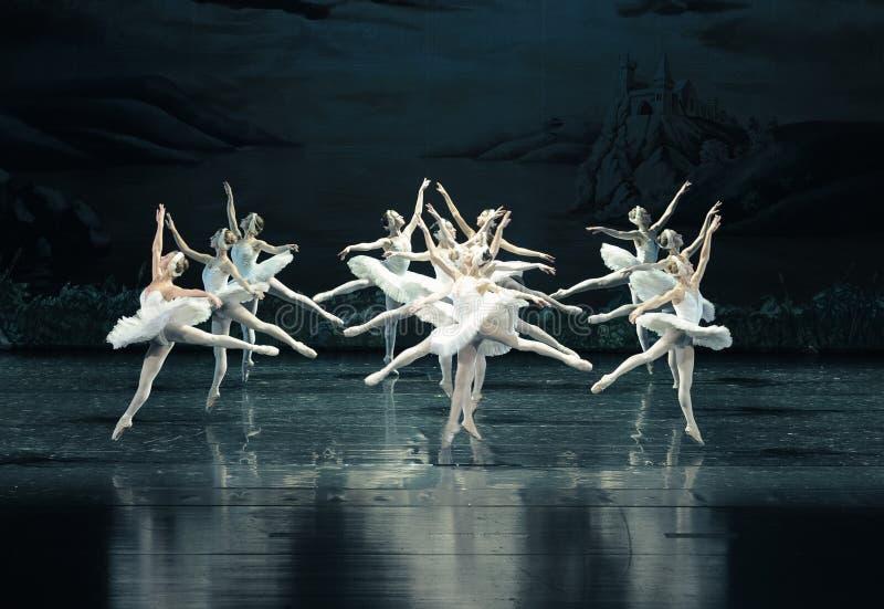 The Swan flying-ballet Swan Lake royalty free stock image